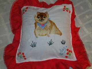 cushion1129_1953.JPG